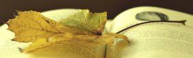Web de Libros – Entre Hojas